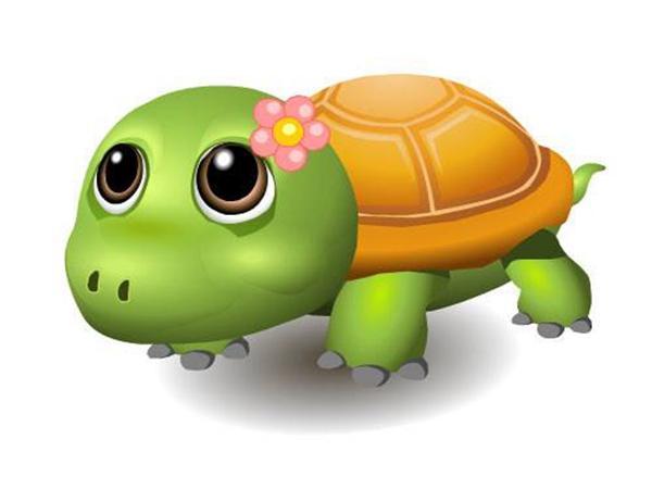 创意绘画 小乌龟